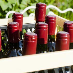 Wijn flessen - wijn maken